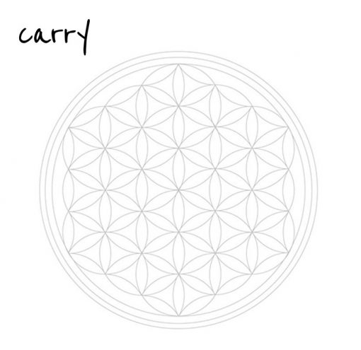 Carry Bottle 2020 Glas Trinkflasche FLOWER OF LIFE
